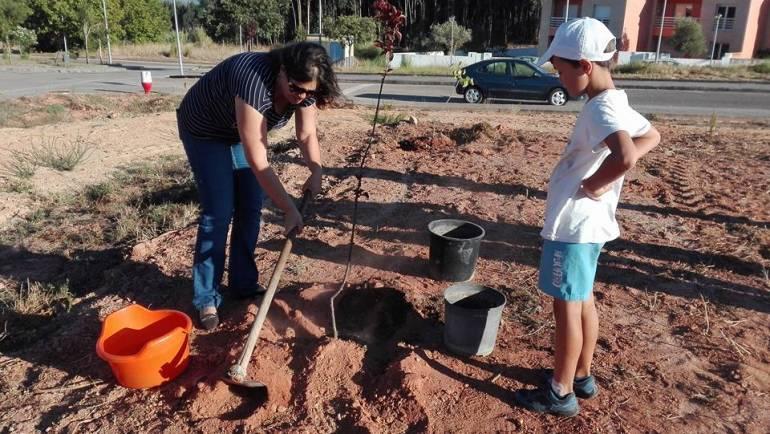 Plantar Campelos